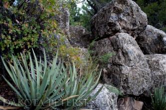 Cliffside Scene