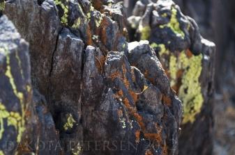 Rusting Ridges