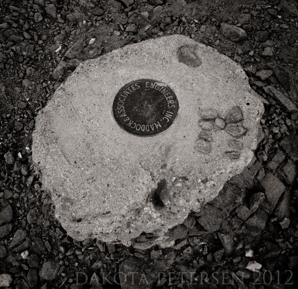Surveyor's Mark