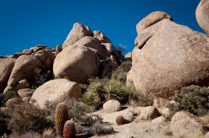 Sheltering Boulders
