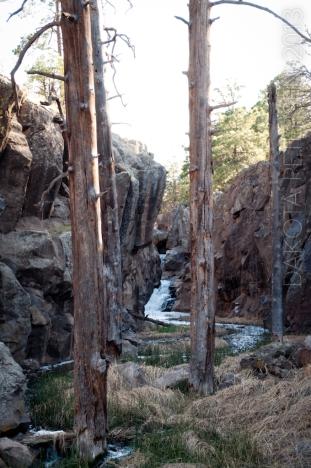 Ancient Pillars Vert
