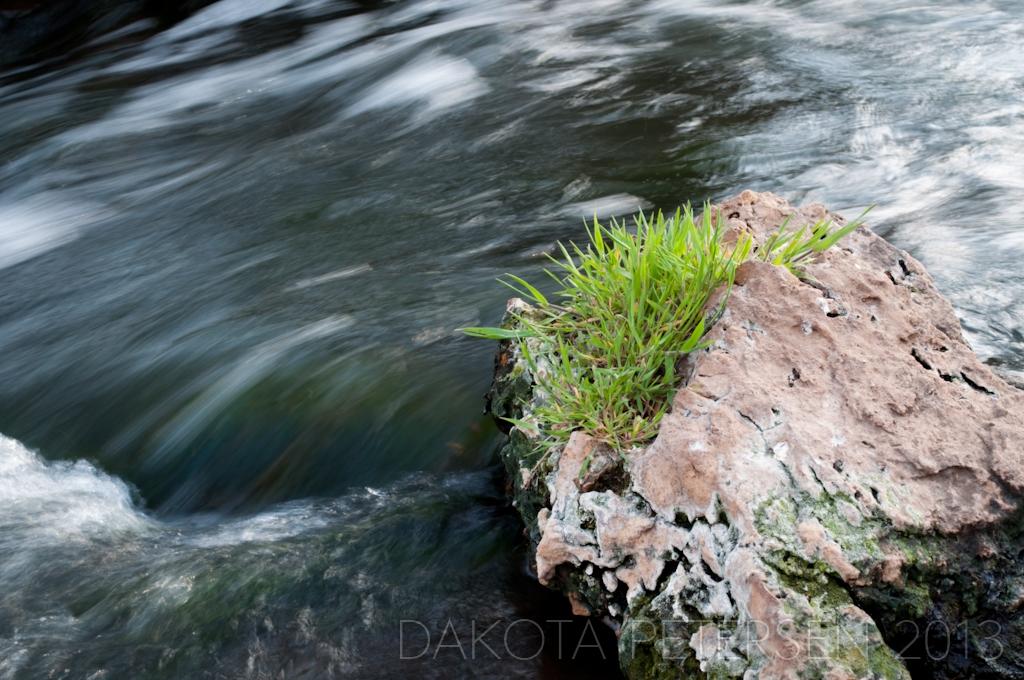 In the Stream