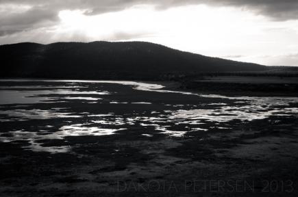 Patchwork Shore