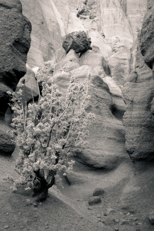 Out of the Rock Mono