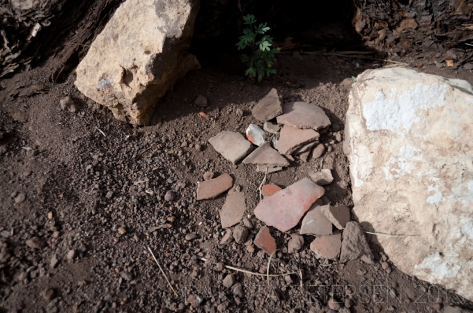 Collected Relics