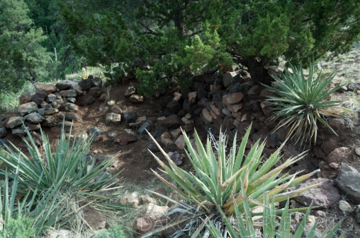 Crumbling House