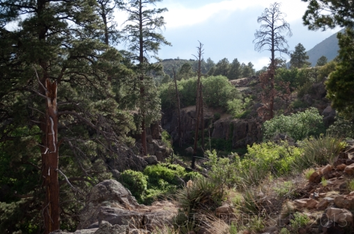 Down the Terraces