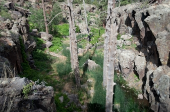 Old Rock Old Wood