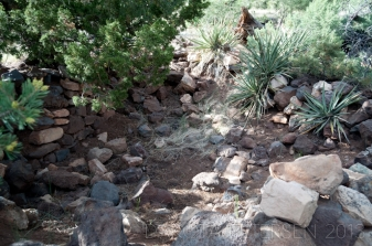 Rest in the Shade