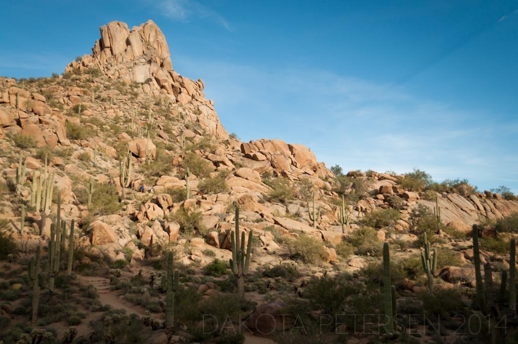 The Desert Rises